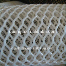 white plastic plain netting(The factory)