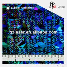 GZ-023, Hologramm-Prägemaschine für holographischen Aufkleber