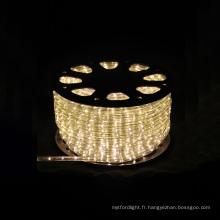 Lumière de rue LED populaire avec différentes couleurs (SRRLS = 2W)
