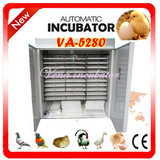 Full Automatic Industrial Commercial Chicken Egg Incubator Va-5280