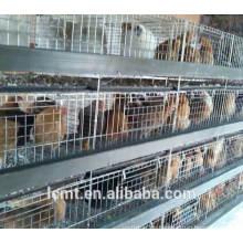 Das Dach-Broiler-Huhn-Käfig-Versorgungsmaterial mit freiem Entwurfs-Huhn-Haus