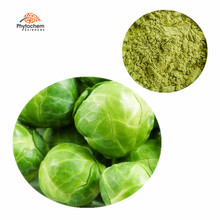 wholesale brussels sprout powder