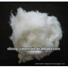 Pure white dehaired cashmere fibre