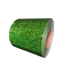 Quality Grass Print Steel Coil