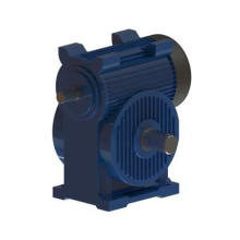 Construction Machinery Transmission Double Enveloping Worm Gearbox