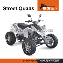 250CC ATV Bike