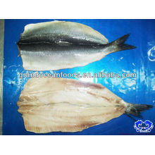 herring fillet IQF seafood