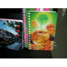 2015 Colorful Lenticular Plastic Notebook