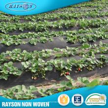 Distribuidor de nuevos productos Wanted Fabric Rolls Weed Control Agriculture Nonwovens