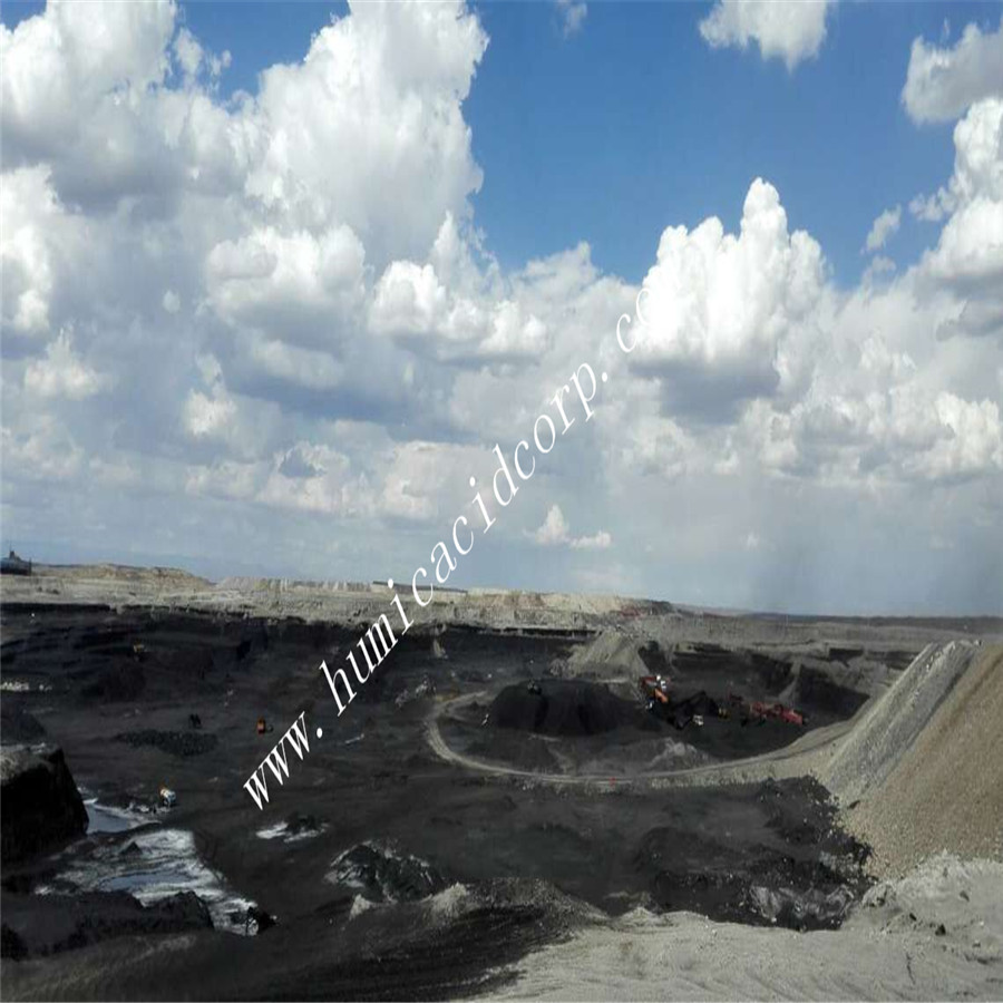 Leonardite mine in Xinjiang