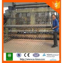 Поставка оцинкованная или с покрытием из ПВХ шестиугольной сетки / шестиугольной сетки / куриной сетки с оптимальной ценой