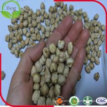 Chickpeas Kabuli Xinjiang Origin with Size 7-10 mm