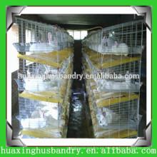 Jaulas prácticas de aves de corral con sistema de alimentación para conejo