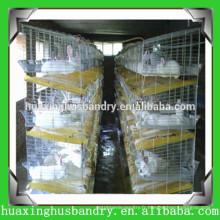 Cages pratiques en couche de volaille avec système d'alimentation pour lapin