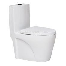 CB-9037 Intelligent automatic Spray Water Massage Toilet disposable toilet seat cover