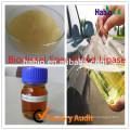 lipase for biodiesel(5000-100000U/g)