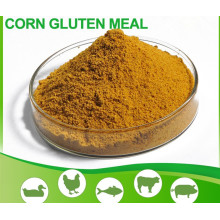 High Quality Corn Feed Corn Gluten Meal