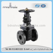 Válvulas de compuerta de hierro fundido Tipo de brida Válvula de compuerta pn16