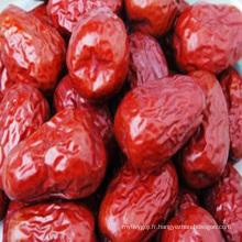 Chinois nouveau séché jujube fruits en vrac fruits frais dates rouges