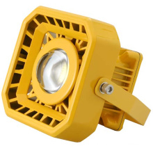 50W LED Explosion Proof Light