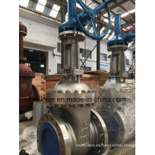Válvula de compuerta de acero inoxidable clase 300 CF8m