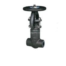Puerta de acero forjado válvula presión cierre Capo