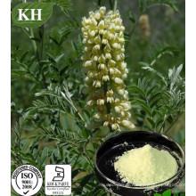 Sophorine, Cytisine 99%, Sophora Alopecuroides Extrait