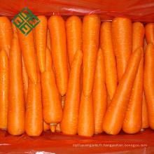 80-150G carotte fraîche