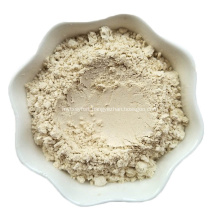 Best Price Extract Lily Bulb Raw Material Powder