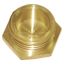 Brass Fitting /Brass Bush/Brass Pipe Fitting (a. 0310)