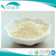 Polvo del Palmitate de la vitamina A de la alta calidad soluble en agua / polvo del Palmitate de la vitamina A 250/500 CWS / 79-81-2