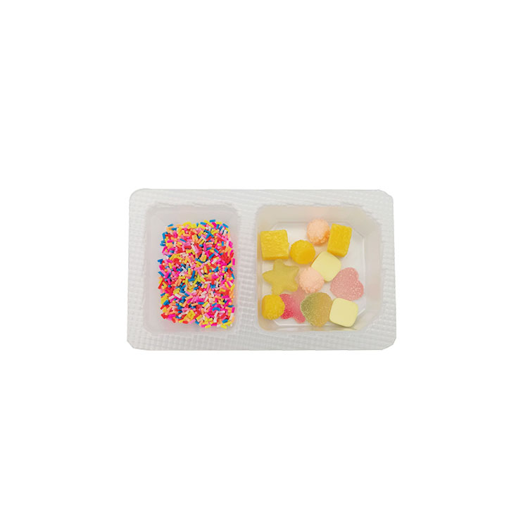 Food Tray Container