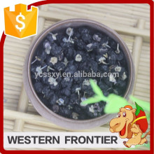Chine QingHai type de culture artificielle Black goji berry