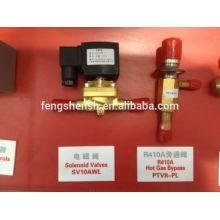 PTV serie FENGSHEN válvulas de expansión de presión constante Válvula de gas caliente