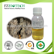 High Quality Agarwood Oil With Low Price
