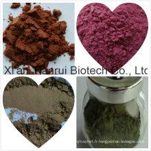 Acide valérique par extrait de racine HPLC / extrait de valériane / extrait de racine de valériane