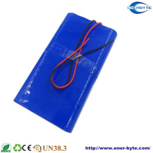 LiFePO4 Battery Pack 48V 30ah