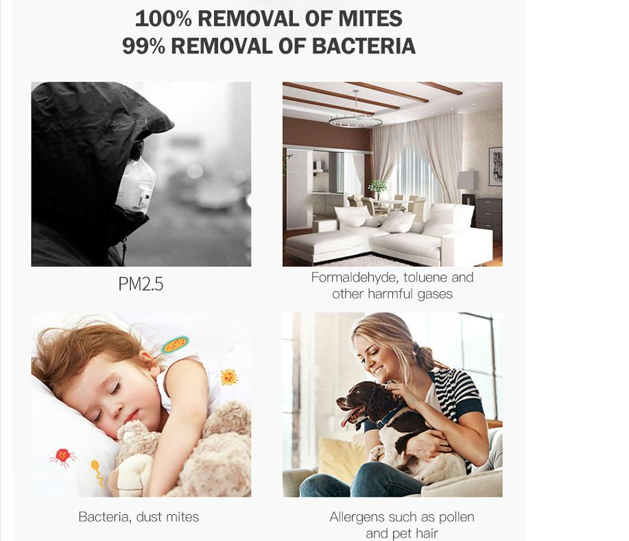 99 Removal Of Bacteria