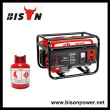 BISON (КИТАЙ) 2KW Стандартный газовый генератор метана