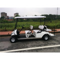Electric Small Golf cart for Golf Club