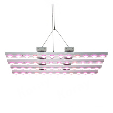 400W 500W 600W 800W 850W 900W 1000W 1200W 1500W 1600W 2000W 3000W 5000W Double Ended Full Spectrum Apollo LED Grow Lights Lowes