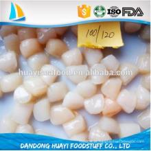 Conchas congeladas de vieira à venda scallop seca