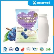 blueberry taste bulgaricus yogurt maker machine