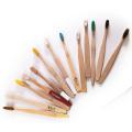 Adulto e kits de escova de dentes de madeira de bambu