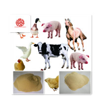 Plant Source Amino Acid Powder 40% for Feed Additives