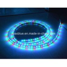 Ws2811 48LEDs / M DC12V lampe de signalisation LED adressable magique