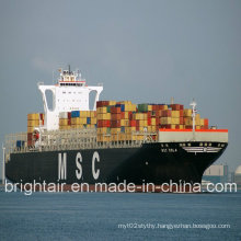 Shipping Service Company/Agent Ship Cargo Sea Freight From China to Ho Chi Minh Vietnam
