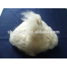 Pure Carded and Dehaired Cashmere Fiber Ivory color 16.5mic 26-38mm