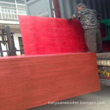High Quality Red Film Faced Plywood for Building Material