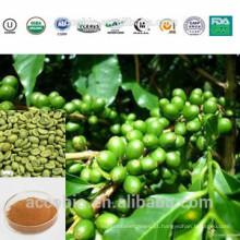 Extrato erval superior do extrato do feijão verde do café da amostra grátis da categoria superior com preço de fábrica